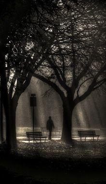 Follow me into the mist. - Ahmad Kavousian