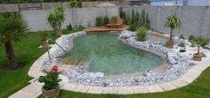 Small Pool Design, Spa Design, Garden Design, Natural Swimming Pools, Swimming Pools Backyard, Kleiner Pool Design, Rooftop Terrace, Back Gardens, Pool Designs