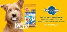 dog food ad - Google Search