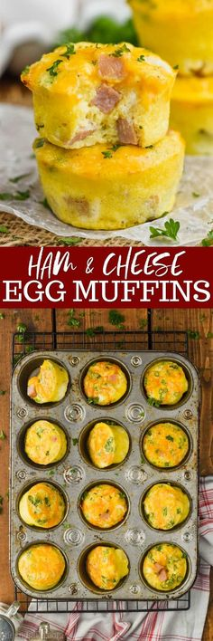 These Ham and Cheese Egg Muffins are such an easy delicious breakfasts on the go. Made with simple ingredients, and easy to freeze, your family will love these muffin tin eggs. Breakfast Casserole With Biscuits, Breakfast On The Go, Breakfast Muffins, Breakfast Dishes, Breakfast Recipes, Breakfast Bake, Egg Recipes, Brunch Recipes, Cooking Recipes