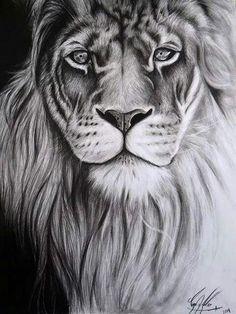 Lion Forearm Tattoos, Lion Head Tattoos, Leo Tattoos, Animal Sketches, Animal Drawings, Lion Tattoo Sleeves, Lion Sketch, Lion Drawing, Beautiful Lion