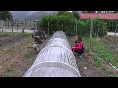 tuneles para cultivar plantas - de búsqueda