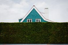 Curioso artículo: Casas y vallados vegetales (EN)