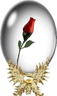 Animated Gif by Lia Haile Hearts And Roses, Red Roses, Beautiful Gif, Beautiful Flowers, My Flower, Flower Art, Gif Bonito, Beau Gif, Animiertes Gif