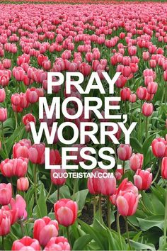 Pray more, worry less. #life #quote
