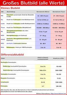 Blutwerte Verstehen Abkürzungen