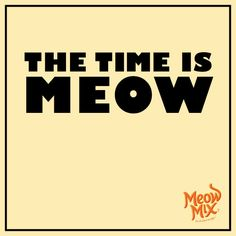 Meow's the time!