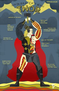 Rachel Ignotofsky Design - The Anatomy of Thor