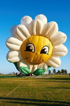 Celina Balloon Festival. Celina, Texas. 2012.  Photo by Andy New.