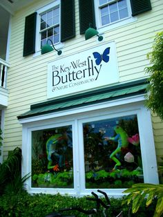 Key West Butterfly Conservatory.