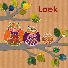 Geboortekaartje voor zoon met retro uilen op een tak. Het aantal uilen is precies zo aan te passen aan het aantal 'uilen' in de familie.