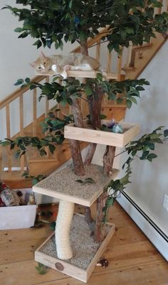 Sycamore Cat Pet Tree House Etsy You are in the right place about locos vatos Here we offer you the most beautiful pictures about the locos somos you are looking for. When you examine the Sycamore Cat Pet Tree House Cat Tree House, Cat House Diy, Cat Playground, Playground Design, Diy Cat Tree, Cat Run, Indoor Pets, Cat Condo, Cat Supplies