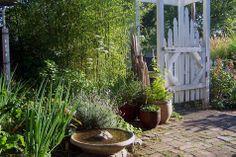Enter the enchanted garden