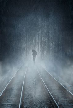 Rain, fall on me. Rain, wash it away, all this away. Rain, soothe what burns inside. Rain, stretch down from the clouds like ribbon like lace, stretch down and soak me now. Rain, fall on me. tyler knott:
