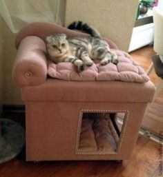Accessories for dogs, manual work . You are in the right place about cute Cat Accessories Here we offer you the most beautiful pictures about the ma Cat House Diy, Diy Dog Bed, Animal Room, Cat Room, Cat Condo, Pet Furniture, Furniture Ideas, Cat Accessories, Small Cat