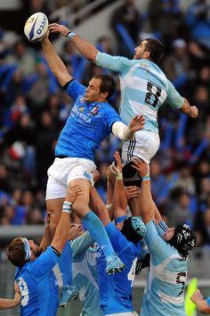 Italy 14 - 22 Argentina - November 15 2008