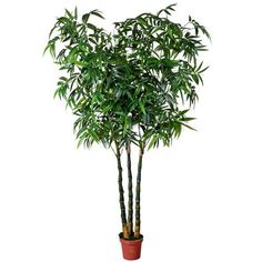 Artificial plant of Lucky BAMBOO IG829-1560-3