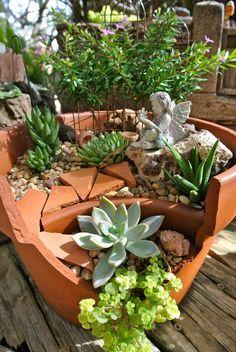 broken pot fairy garden, featuring succulents.
