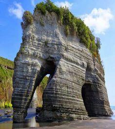 Elephant rock in New Zealand