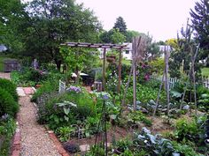 A fantastic cottage-style vege garden, productive and pretty