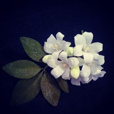 Orange jessamine / Sweet lime. #crepepaper #paperflower