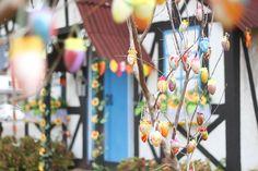 O Parque Henry Paul vai se transformar na Vila do Coelho da Páscoa, de 25 de março a 17 de abril. Uma decoração temática especial, que contará com o maior boneco de coelho da região, Vila do Coelho, Osterbrunnen e muito mais irá encantar toda a família. Além disso, nos finais de semana, diversas atrações ...