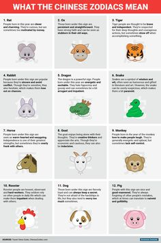 bi_graphics_chinese zodiac meanings zodiac Happy Chinese New Year! This is what the Chinese zodiac says about you Happy Chinese New Year, Chinese New Year Zodiac, Chinese Zodiac Signs, Chinese New Year Sayings, Chinese Zodiac Dragon, Dragon Zodiac, Chinese Astrology, Chinese Zodiac Rabbit, Zodiac Meanings
