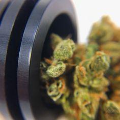 UNBREAKABLE SE-2 bowl piece  More info on www.metalforms.at #METALFORMS#cannabis#420#cannabiscommunity#marijuana#thc#weed#weedporn#stoner#marihuana#ganja#hightimes#710#maryjane#kush#highlife#dank#stoned#highsociety#cbd#dabs#topshelf#productphotography#stoners#headyglass#productdesign#fueledbythc#smoke#sativa#bud#thc Buy Edibles Online, Buy Weed Online, Medical Marijuana, Cannabis, Ganja, All About Time, Rolls, Mary, Herbs