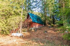 A-frame Cabin For Sale in Skykomish, WA 006 Cabins For Sale, Tiny Houses For Sale, Tiny House On Wheels, A Frame House Plans, A Frame Cabin, Roof Styles, House Styles, Green Metal Roofing, Propane Fireplace