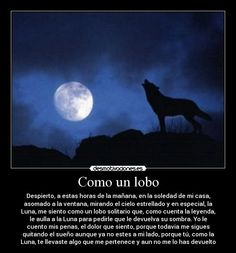 imagenes de lobos con poemas - Buscar con Google