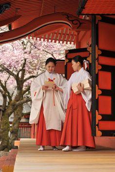 Photos of the Hanami in Fujinomiya--miko