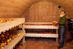 Gewölbekeller für die Obstlagerung - Gewölbekeller