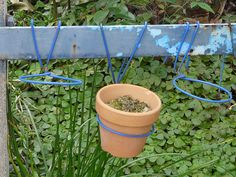 Wire hangers used as pot hangers.decorate an ugly chain link fence(Diy Garden Pots) Fence Plants, Potted Plants, Outdoor Plants, Garden Spaces, Garden Pots, Shabby Chic Zimmer, Diy Pinterest, Pot Hanger, Pot Hooks