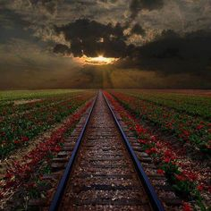 15 Most Amazing And Beautiful Places In The World That You Must See, Rail Sunset, Romania