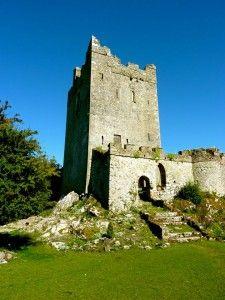 The Clonony Boleyn Girls - The Anne Boleyn Files Queen Anne, King Queen, Tudor Architecture, Tudor Era, Plantagenet, Irish Sea, Viscount, Queen Of England, Republic Of Ireland