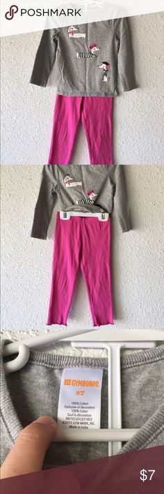 Girl's Pink and Grey LongSleeve Pant Outfit Size 2T Gymboree Matching Sets