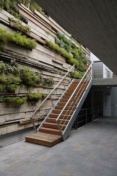 clean stairs against a partial green wall + reused wood panels Zentro Office Building and CommercialFoto: JUAN SOLANO OJASI