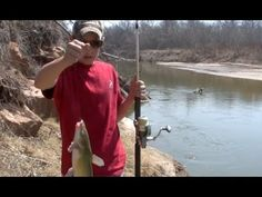 8 best catfish baits catch catfish blue flathead and for Fishing youtube channels