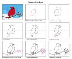 Drawing Tutorials This cardinal drawing project is from way back when, but I never made a drawing tutorial for it. - This cardinal drawing project is from way back when, but I never made a drawing tutorial for it. No time like the present to fix that. Drawing Projects, Drawing Lessons, Art Lessons, Drawing Tutorials, Drawing Ideas, Winter Art Projects, School Art Projects, Cardinal Drawing, January Art
