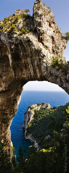 Regilla ⚜ Capri, Italia                                                                                                                                                      Más