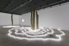 Keith Lemley's sculptural installation consists of concentric rings of white neon tubes the paths of which mimic the natural variation found in the logs at their center. Lemley creates a space for dialogue between nature and the machine by filling the gallery with artificial light that is delivered through seemingly organic forms. By combining the everyday occurrence of perceiving light with an unusual delivery method,