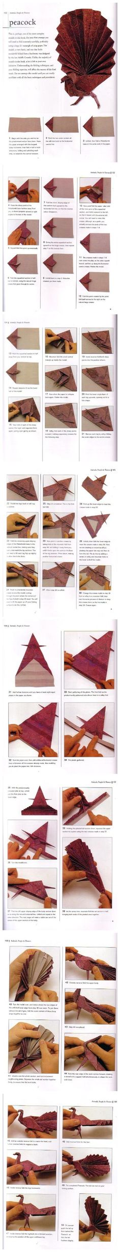 peacock #origami #paper #crafts #DIY #creative #cards