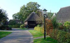 Gees in Drenthe