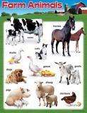 Farm Animals Learning Chart