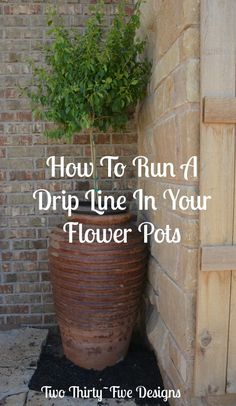 How-To-Run-A-Drip-Line-In-Your-Flower-Pots