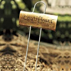 Always labels newly planted seeds | Photo: Kolin Smith | thisoldhouse.com
