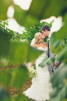 delmonaco winery wedding photography, bride and groom
