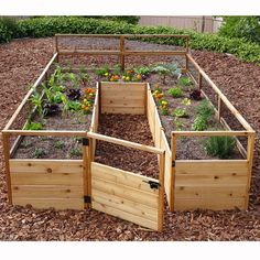 Potager Garden Outdoor Living Today 8 ft x 8 ft Western Red Cedar Raised Garden Wood Raised Garden Bed, Cedar Garden, Building A Raised Garden, Raised Beds, Fence For Garden, Garden Planters Uk, Elevated Garden Beds, Raised Flower Beds, Balcony Gardening