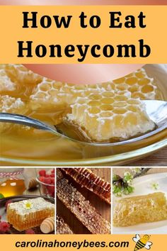 Enjoy eating delicious honeycomb with these tips and recipes using honeycomb pieces. This is the most natural way to enjoy raw honey. Honey in the comb is wonderful! Honey Recipes, Raw Food Recipes, Honeycomb Raw, Cooking With Honey, Human Digestive System, Local Honey, Grilled Sandwich, Ice Cream Toppings, Raw Honey