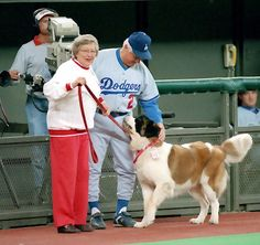 """""""get that mutt outa here"""". Mlb Reds, Cincinnati Reds Baseball, Go Red, Dog Show, Working Dogs, Dodgers, Old School, Athletic, Animals"""